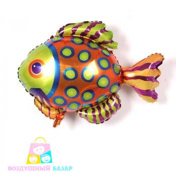 middle-left-color-center-bottom-2-1-0--1553173447.3186 Рыбка из воздушных шаров